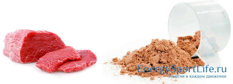 Говяжий протеин в спортивном питании