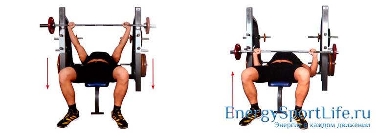 Как накачать грудные мышцы: программа тренировок для грудных мышц