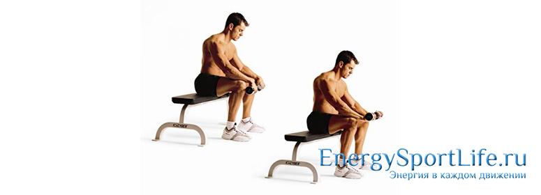 упражнения для мышц предплечья
