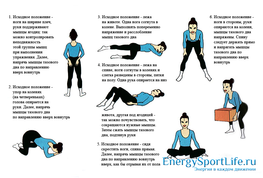 Упражнения Кегеля для интимных мышц