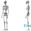 Stroenie-skeleta