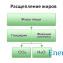 Жировой обмен в организме человека1