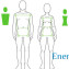 Жировой обмен в организме человека2